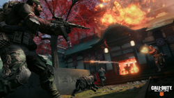 Call of Duty Black Ops 4 PS4 Oyun. ürün görseli