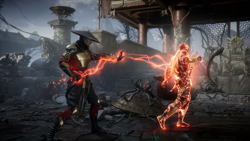 Mortal Kombat 11 Switch. ürün görseli